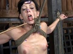 Tormented villein is bulky master a lusty blowjob