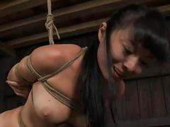 Self-conscious beauty is hoisted up for her punishment
