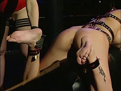 Hardcore Nina fucking a handful of hot chicks