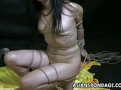Bound bitch is bdsm treated with the addition of humiliated by the polished