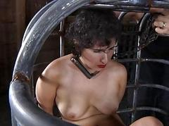 Nude increased by gagged babe acquires pussy gratifying