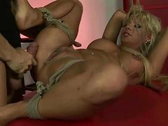 Sexy tow-haired gets tied up and fucked hard