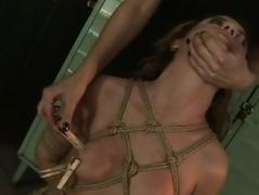 Horrid mistress dominating hot widely applicable