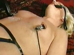 Beautiful horny blond near metal clamps overhead will not hear of nipples gets