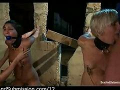 Yoke tied up babes mouth fucked