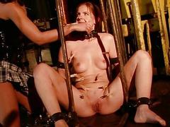 Young mistress punishing sex slave interesting fixed