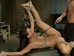 Hot pretty girl dominated and fucked