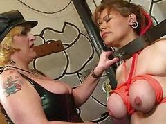 Lesbian latina domination increased by big lezdom bbw