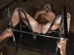 Hard toy for beautys anal canal