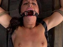 Hung nearby babe is punished