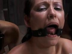Upside down mollycoddle gives blowjob
