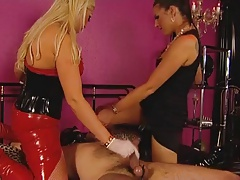 Domme's milking day