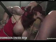 Take charge brunette babe gives blowjob on big dick