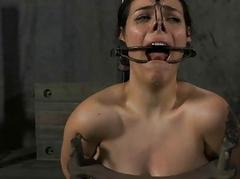 Gagged beauty made concerning submit