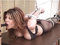 Hollywood Hogtied And Dildo-Gagged In Underthings On A Table